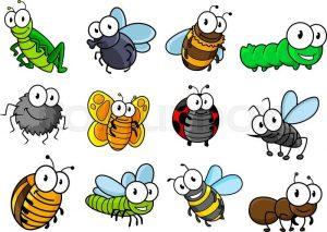 bugs wildlife